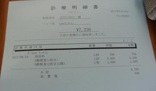 20-8.JPG