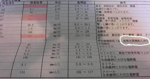 29-5.jpg