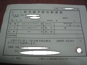 IMG_1013.JPG